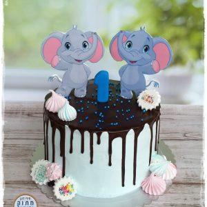 עוגת יום הולדת שנה אדם ואגם